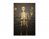 Secret Society Skeleton Painting